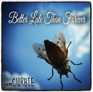 iamCURBIE - Better Late Than Forever album cover