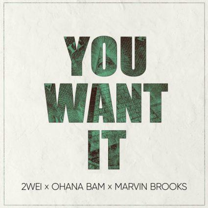 2WEI feat. Marvin Brooks & Ohana Bam - You Want It single